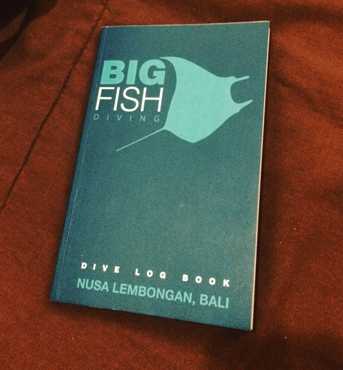 Bali, Indonesia - Big Fish dive book