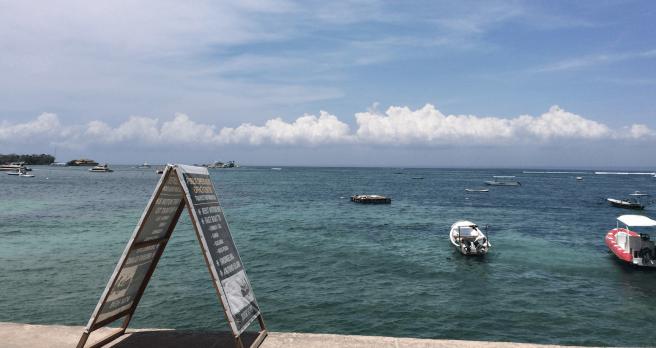 Bali Indonesia - Ocean life
