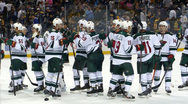 Minnesota Wild Team